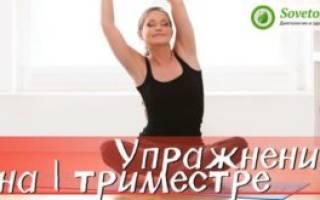 Упражнения Для Беременных 2 Триместр В Картинках