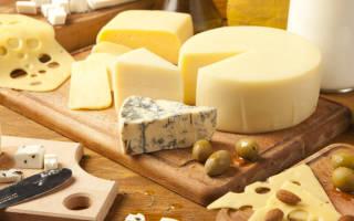 Сыр с плесенью при лактации