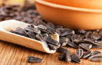 Можно ли кормящей семечки жареные