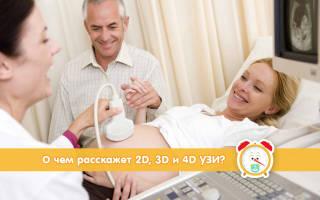 Узи 2 д при беременности