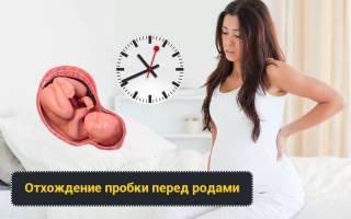 Сколько времени у беременных отходит пробка